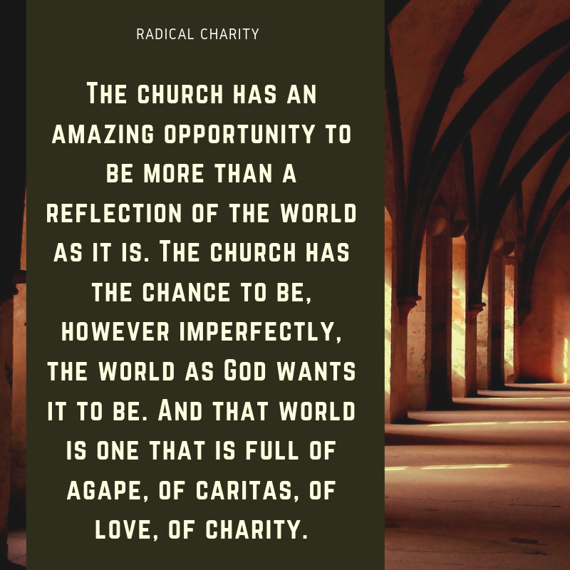 Radical Charity Preview 11